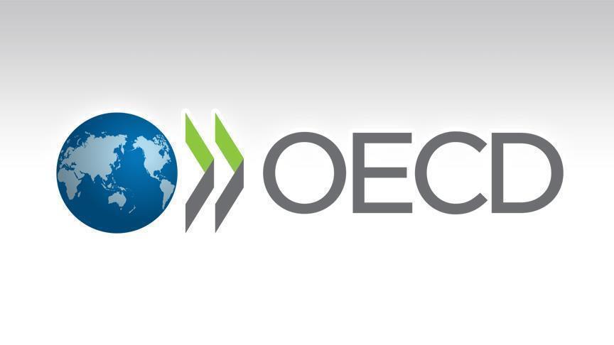 ОЭСР даст оценку жилищной политики России